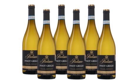 EG619030-Oro Italiano Pinot Grigio delle Venezie DOC 2020-wijnactie